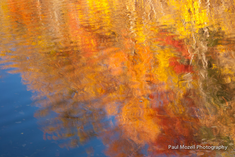 Fall Reflections, Harold Parker State Forest, Andover, MA