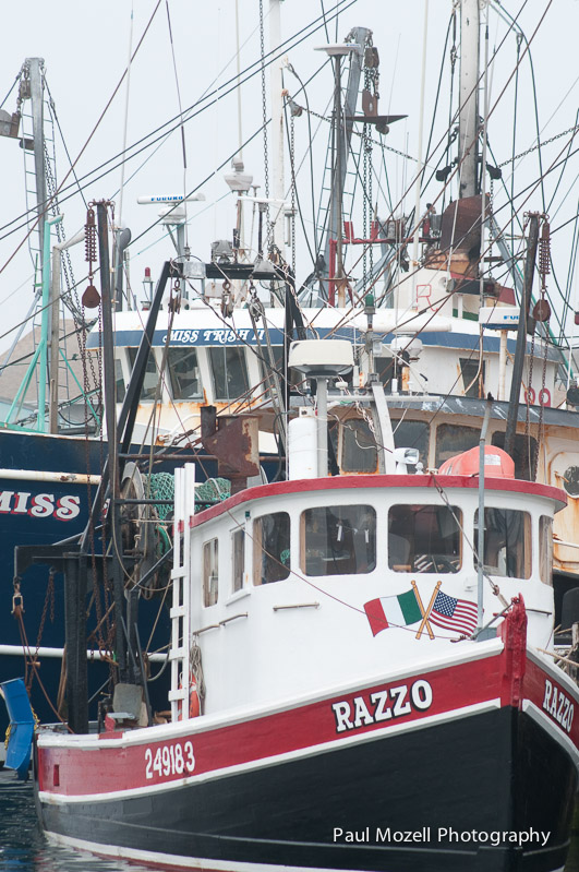Fishing Fleet, Gloucester