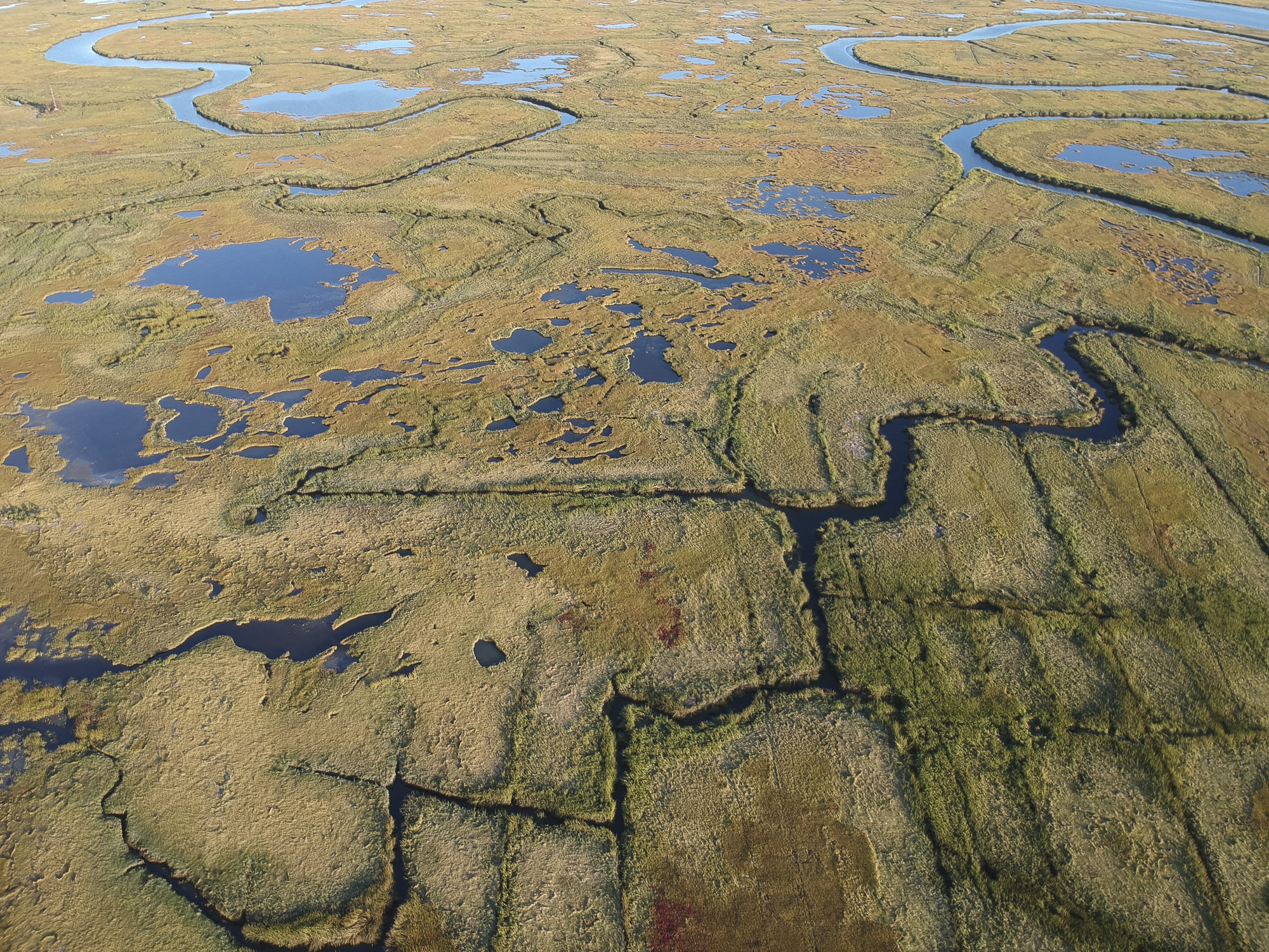 The Great Marsh from above